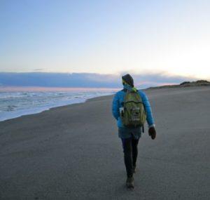 Checking the beach at Ruatapu for penguin tracks