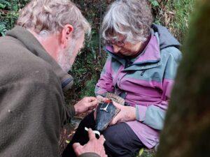 Matt Charteris and Kerry-Jayne Wilson apply a datalogger to a blue penguin
