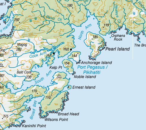 Map of Port Pegasus, South East corner, Stewart Island