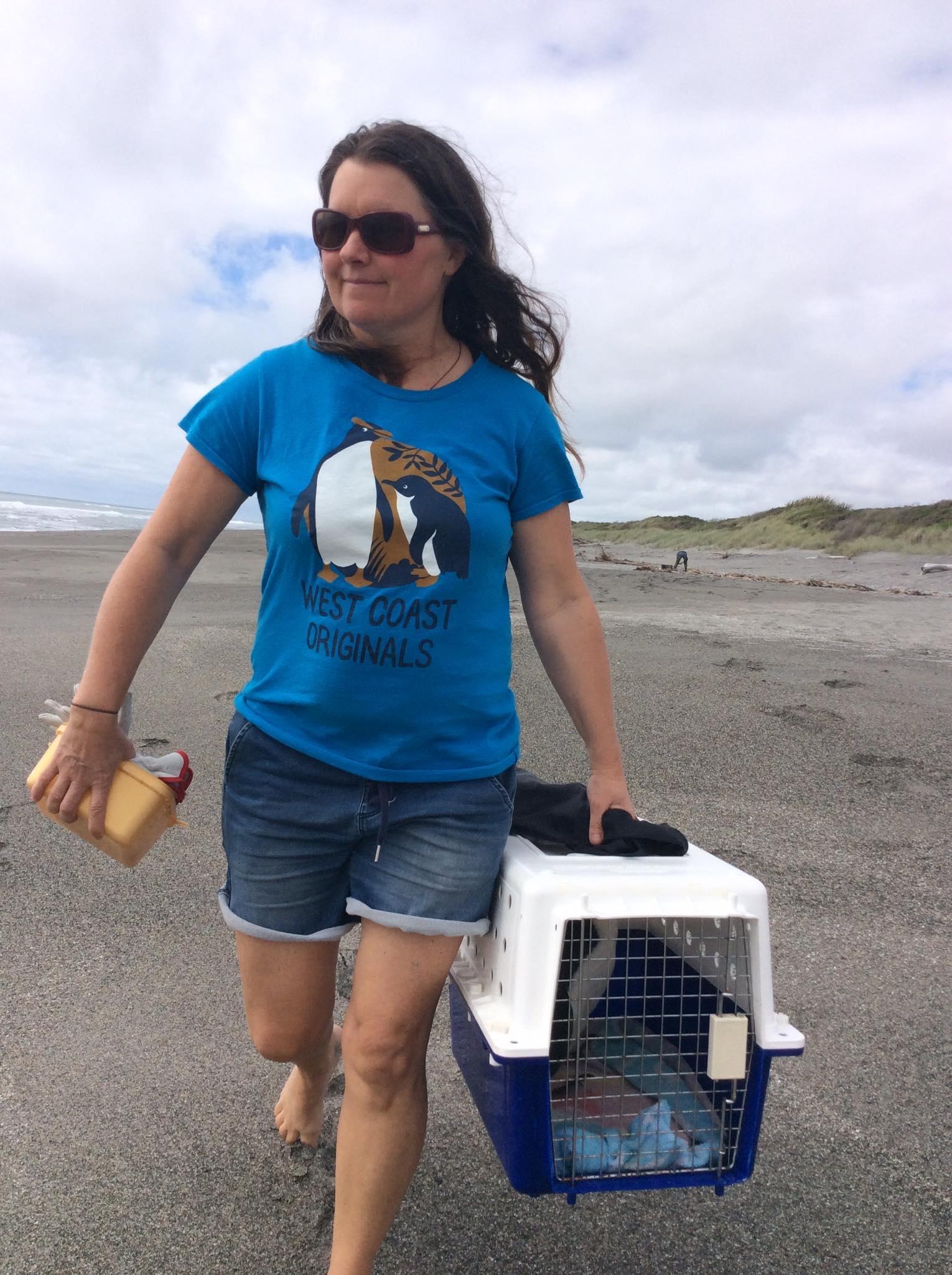 Tracy returns Falcon the tawaki to the beach