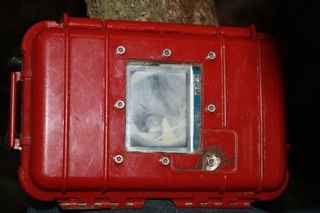 burrowscope