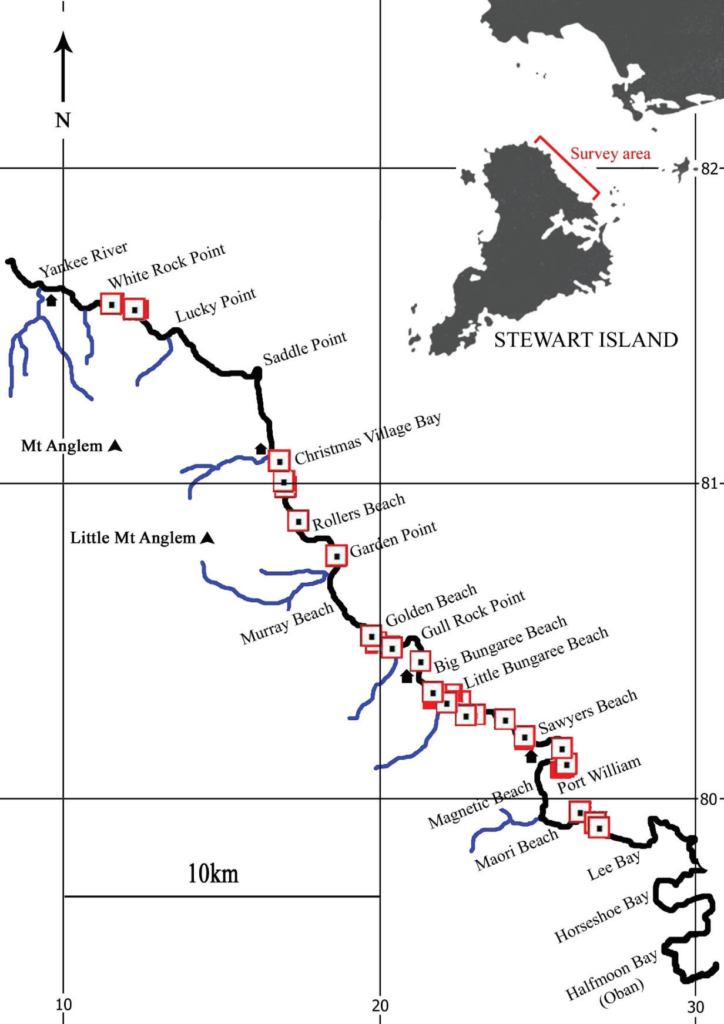 tawaki survey map