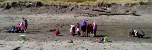 4a Investigating the mud r