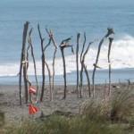 Driftwood and Sand festival at Hokitika