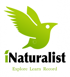 iNaturalist logo and link