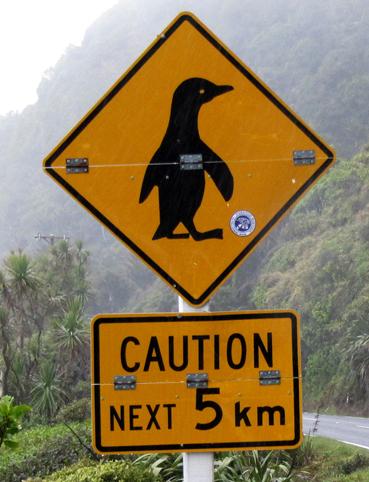 penguin sign coast roadLR